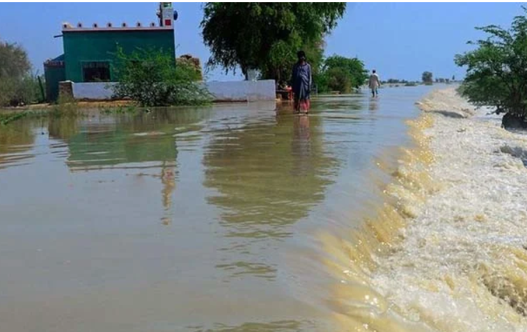 WAPDA decides to build a new dam to store flood water