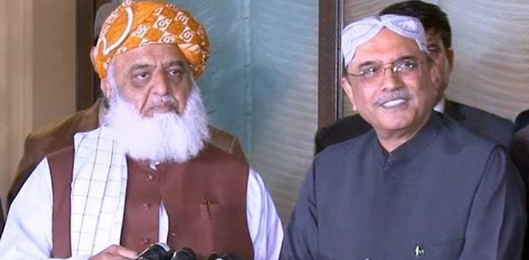 Fazlur Rehman meets Asif Zardari in private hospital, discusses political situation