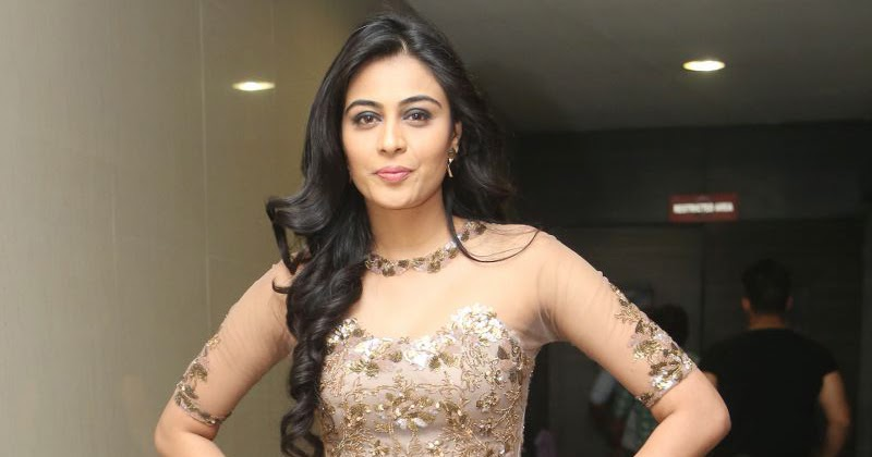 Neha Hinge Biography, Facts & Life Story Updated 2021